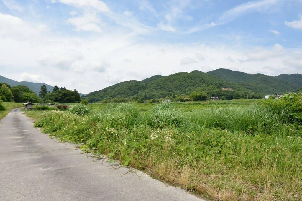 why-sasayama-background