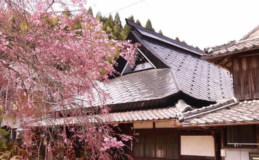 丹波篠山 木々も春の装い